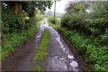 H5956 : Muddy along Sess Road by Kenneth  Allen