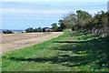NU1909 : Bridleway near Shilbottle by Jim Barton