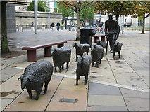 J3474 : Shepherd and sheep sculpture, Belfast by Gareth James