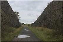 SK1463 : Cutting on the Tissington Trail South of Parsley Hay by Chris Heaton
