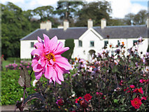 V9690 : Killarney House gardens by Gareth James