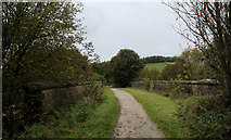 SK1461 : Tissington Trail crossing the B5054 by Chris Heaton