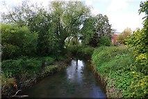 SO8483 : River Stour, Kinver, Staffs by P L Chadwick