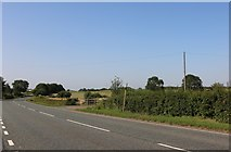 SP9064 : The A509 north of Wollaston by David Howard