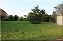 TL0156 : Green on Rushden Road, Milton Ernest by David Howard