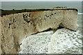 SZ0582 : Headland and natural arch near Handfast Point by Derek Harper