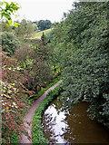 SJ9553 : Caldon Canal near Denford in Staffordshire by Roger  Kidd