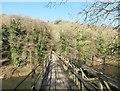 SO5817 : Wye Valley Walk on the Bridge by Des Blenkinsopp
