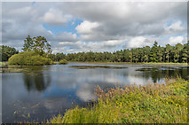 NU0702 : Nelly's Moss North Lake by Ian Capper