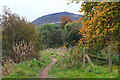 NT5334 : Path by the Tweed near Melrose by Jim Barton