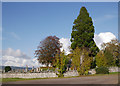 NH5141 : Trees, Tomnacross Cemetery by Craig Wallace