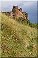 NU1835 : Bamburgh Castle by Ian Capper