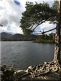 NY2622 : A view from Friar's Crag Keswick by Jennifer Petrie