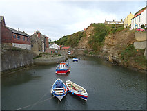 NZ7818 : Roxby Beck, Staithes by habiloid