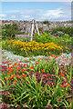 NU1341 : Walled garden by Ian Capper