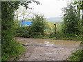 TQ3452 : Muddy path near Godstone by Malc McDonald