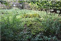 NT5570 : Old Gravestones in Baro Kirkyard (3) by Anne Burgess