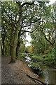TQ2171 : Beverley Brook by John Myers