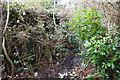SD9926 : Overgrown muddy footpath near May Royd Farm by Luke Shaw
