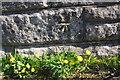 NX9821 : Benchmark on stone in wall beside footpath south of Lowca by Luke Shaw