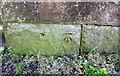 NX9922 : Benchmark on buttress of bridge of dismantled railway by Luke Shaw