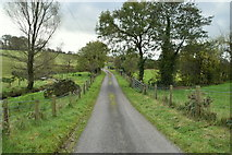 H5574 : Merchantstown Road, Merchantstown by Kenneth  Allen