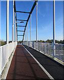TL4761 : Milton: on the Jane Coston Bridge by John Sutton