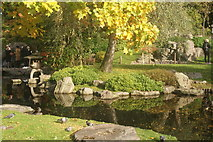 TQ2479 : View of the pond in the Kyoto Gardens in Holland Park #2 by Robert Lamb