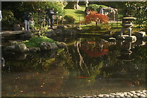 TQ2479 : View of the pond in the Kyoto Gardens in Holland Park #8 by Robert Lamb