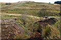 NS3063 : Ruined bridge by Mick Garratt