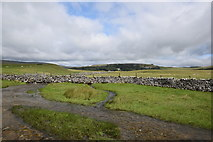 SD8965 : Malham Water just south of the road by Bill Harrison