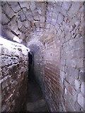 SX9292 : Exeter underground passages (1) by Stephen Craven