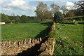 ST5312 : Churchyard wall, East Coker by Derek Harper