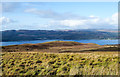 NR9890 : Grassy moorland at around 250 metres by Trevor Littlewood