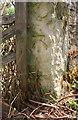 SE3996 : Benchmark on stone post at south end of east parapet of Hallikeld Bridge by Luke Shaw