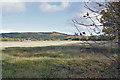 NH4456 : Achilty henge, Contin by Richard Dorrell
