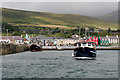 Q4400 : Dolphin-seekers Leaving Dingle Pier by David Dixon