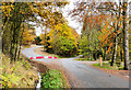NZ0831 : Bypassing road in Hamsterley Forest by Trevor Littlewood
