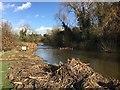 SP2964 : Pond clearance, Myton Fields, Warwick by Robin Stott