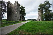 S4747 : Burnchurch Castle and turret tower, Burnchurch, Co. Kilkenny by P L Chadwick