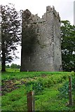 S4747 : Burnchurch Castle, Burnchurch, Co. Kilkenny by P L Chadwick