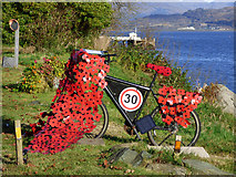 NS1981 : Poppy bike at Blairmore by Thomas Nugent