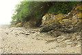 SX4462 : Cliff near Thorn Point by Derek Harper