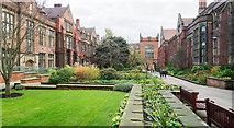 NZ2465 : Ornamental gardens at Newcastle University by Trevor Littlewood