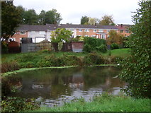 ST2896 : The Monmouthshire & Brecon Canal, Cwmbran by JThomas