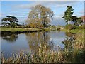 SO8844 : Croome River and the Chinese Bridge by Philip Halling