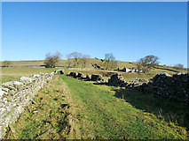 NY9539 : Grassed lane leading to High Farm by Trevor Littlewood