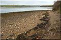 SX7440 : Foreshore at Wareham Point by Derek Harper