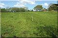 SS5523 : Electric fence near Yarnscombe by Derek Harper
