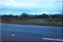 TF4407 : The A47, Wisbech by David Howard